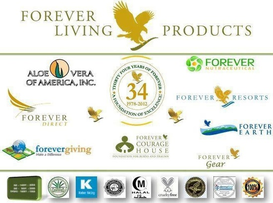 multi level marketing forever living